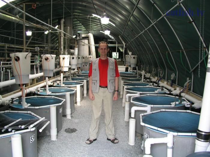 Выращивание рыбы как бизнес рыбоводный модуль осетр 10