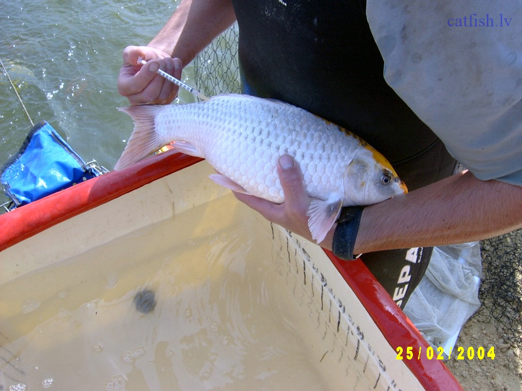 ихтиолог рыбалка видео