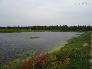 Рыбоводный пруд