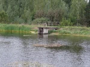 В рыбоводном пруду монах